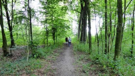 IVN Wandeling Goorloop (17)