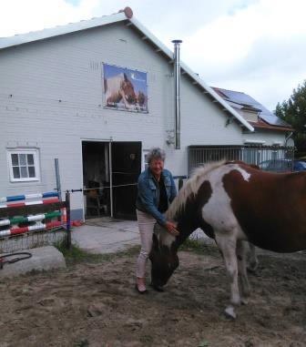 Workshop Coaching met Paarden (3)